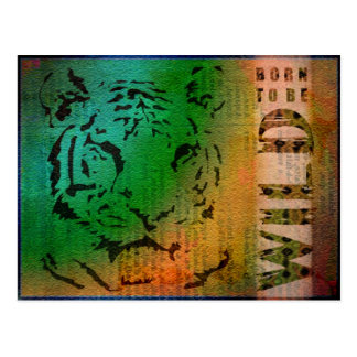 Tiger-born to be wild postcard