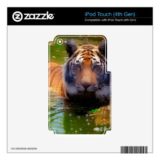 Tiger Bubble Bath iPod Touch 4G Skins