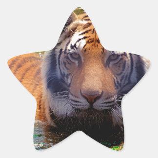 Tiger Bubble Bath Sticker