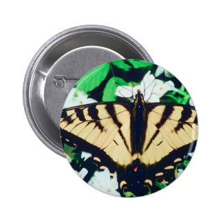 Tiger Butterfly 2 Inch Round Button