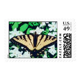 Tiger Butterfly Postage