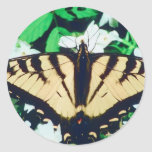 Tiger Butterfly Round Stickers