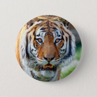 Tiger ButtonLife Pinback Button