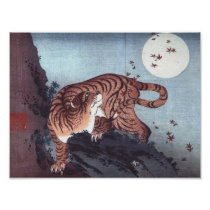 Tiger by Moonlight Poster