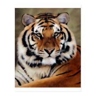Tiger by Psyco Post Cards