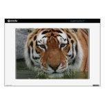 "Tiger Case 15"" Laptop Skins"