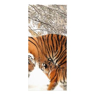 Tiger Cat Animal Print Personalize Anniversaries Rack Card