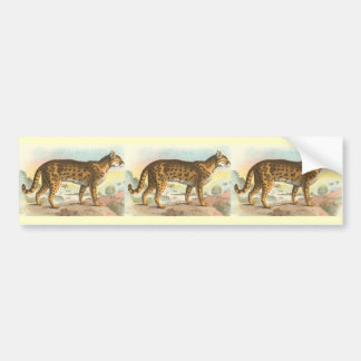 Tiger-Cat Car Bumper Sticker
