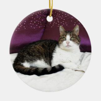 Tiger Cat Ceramic Ornament