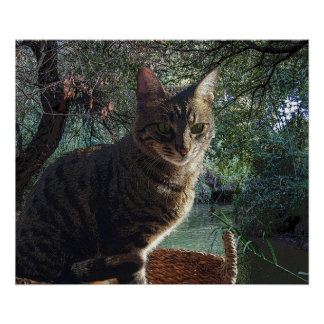 Tiger Cat In Basket Swimming In Mountain River Poster