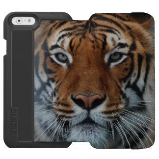 Tiger Cat Stripes Jungle Safari Eyes Face Animal iPhone 6/6s Wallet Case
