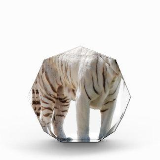 Tiger cat stripes personalize diy Anniversaries Award