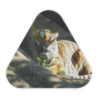 Tiger Catnap Bluetooth Speaker