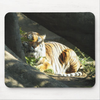 Tiger Catnap Mouse Pad