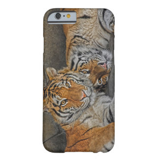 Tiger Cave Barely There iPhone 6 Case