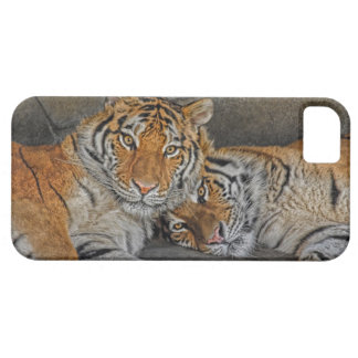 Tiger Cave iPhone SE/5/5s Case