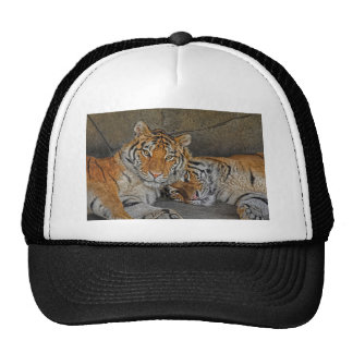 Tiger Cave Trucker Hat