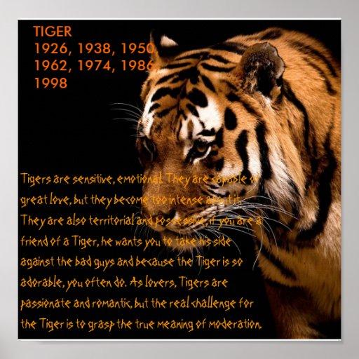 Tiger Chinese Zodiac Poster   Zazzle