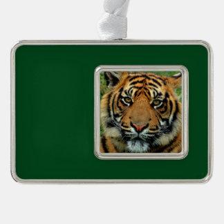 Tiger Christmas Tree Ornament