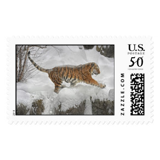 Tiger Cliff Snow Gallop Postage