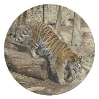 Tiger Climbing Plate