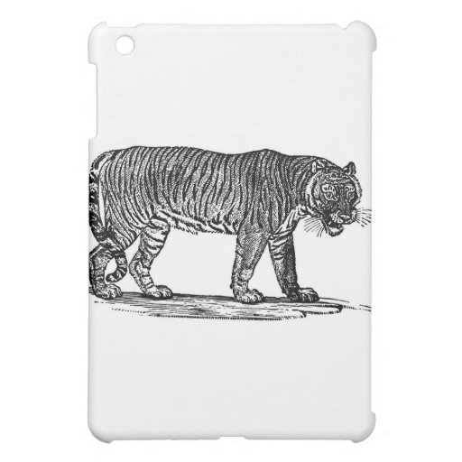 tiger-clip-art-1