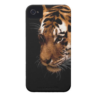 TIger Close Up iPhone 4 Case