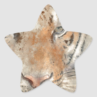 Tiger Close Up in Watercolor Star Sticker