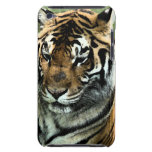 Tiger-Close-up iPod Touch Covers