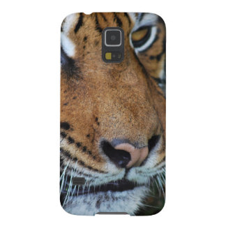 Tiger close up photo galaxy s5 cover