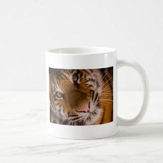 Tiger Close-Up View Classic White Coffee Mug