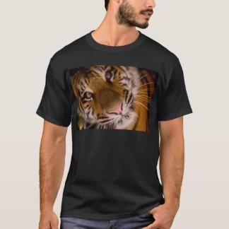 Tiger Close-Up View T-Shirt