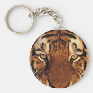 Tiger Closeup and Personal Key Chains