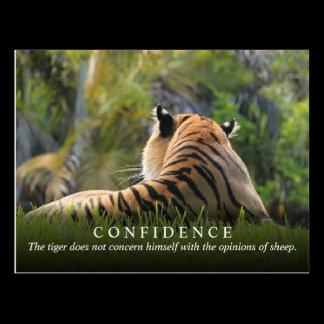 Tiger Confidence Quote Custom Postcard