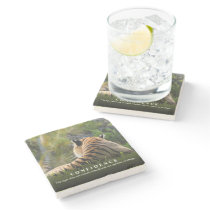 Tiger Confidence Quote Custom Stone Coaster