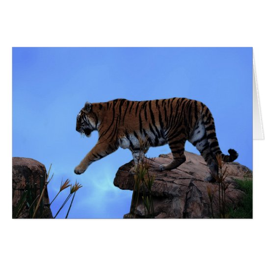 Tiger crossing card