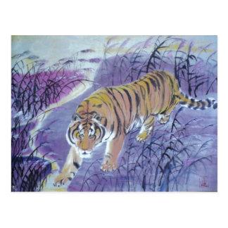tiger crossing water postcards