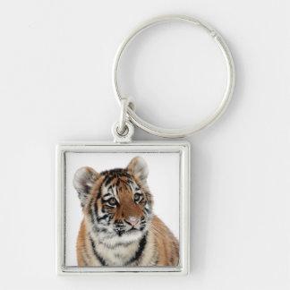 Tiger cub beautiful photo square keychain