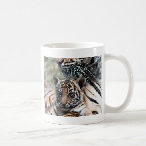 Tiger cub coffee mug