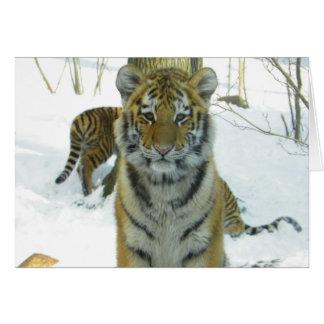 Tiger Cub In Snow Portrait Card