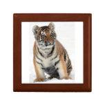Tiger Cub Jewelry Box