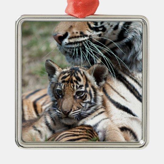Tiger Cub Metal Ornament