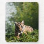 Tiger Cub Mouse Pad