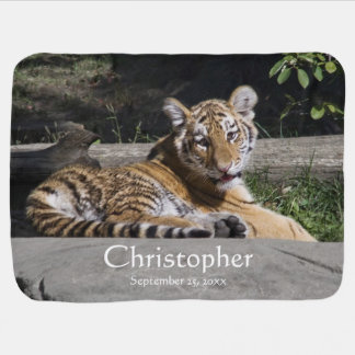 Tiger Cub on the Rocks Personalized Dual sided Receiving Blanket