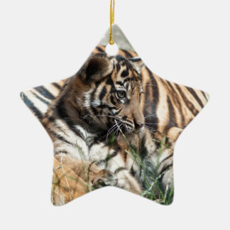 Tiger Cub Double-Sided Star Ceramic Christmas Ornament