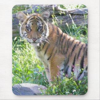 Tiger Cub Portrait 2 Mouse Pad