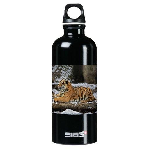 Tiger Cub Pose as Sphinx SIGG Traveler 0.6L Water Bottle