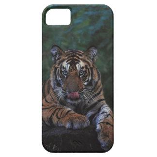 Tiger Cub Reclines on Rock iPhone 5 Case
