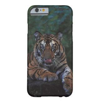 Tiger Cub Reclines on Rock iPhone 6 Case