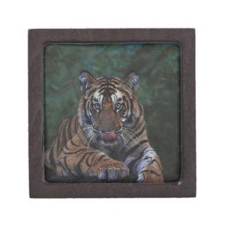 Tiger Cub Reclines on Rock Keepsake Box